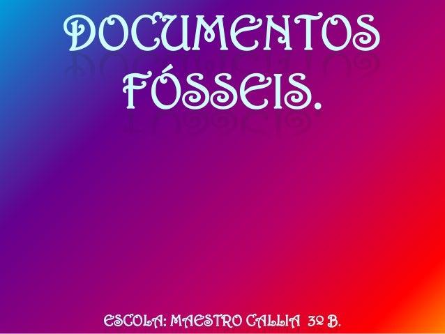 DOCUMENTOS FÓSSEIS.  ESCOLA: MAESTRO CALLIA 3º B.