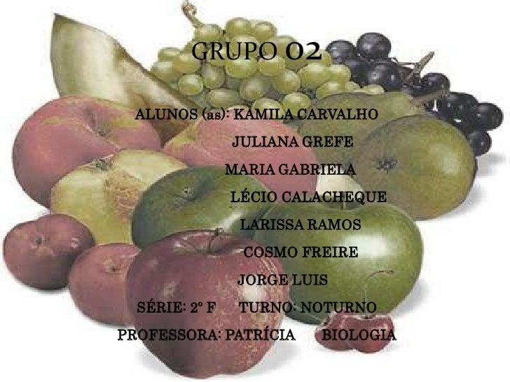 Trabalho de frutos e frutas
