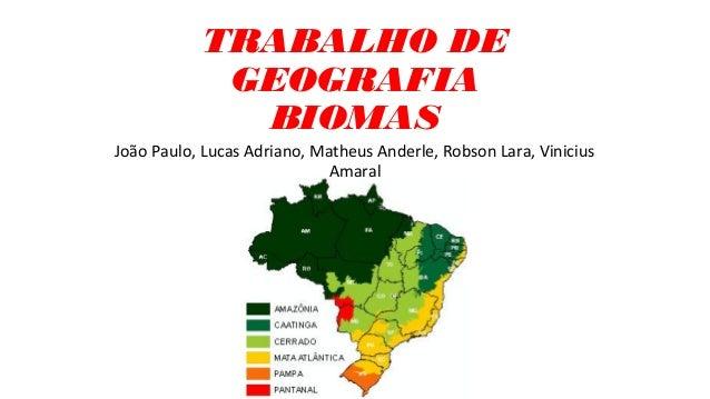 TRABALHO DE GEOGRAFIA BIOMAS João Paulo, Lucas Adriano, Matheus Anderle, Robson Lara, Vinicius Amaral