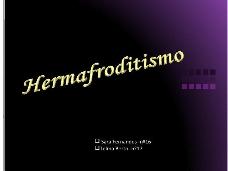 <ul><li>Sara Fernandes -nº16 </li></ul><ul><li>Telma Berto -nº17 </li></ul>