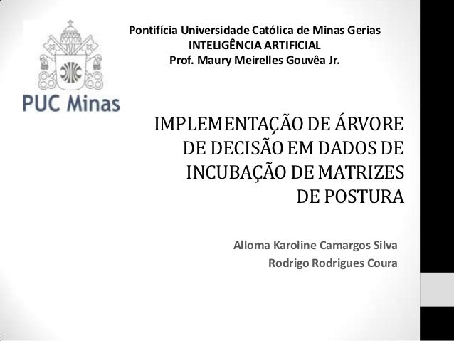Pontifícia Universidade Católica de Minas Gerias            INTELIGÊNCIA ARTIFICIAL        Prof. Maury Meirelles Gouvêa Jr...