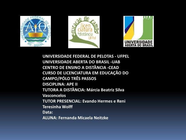 UNIVERSIDADE FEDERAL DE PELOTAS - UFPEL<br />UNIVERSIDADE ABERTA DO BRASIL -UAB<br />CENTRO DE ENSINO A DISTÂNCIA -CEAD<br...