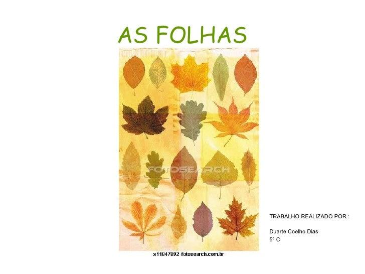 AS FOLHAS <ul><li>TRABALHO REALIZADO POR : </li></ul><ul><li>Duarte Coelho Dias </li></ul><ul><li>5º C  </li></ul>