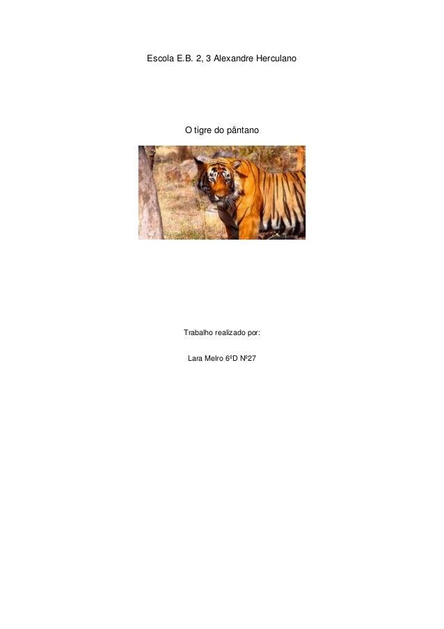 Escola E.B. 2, 3 Alexandre Herculano O tigre do pântano Trabalho realizado por: Lara Melro 6ºD Nº27