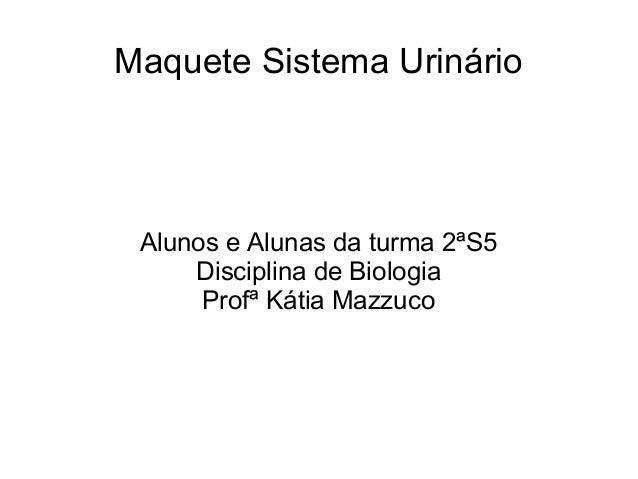 Maquete Sistema Urinário Alunos e Alunas da turma 2ªS5     Disciplina de Biologia      Profª Kátia Mazzuco