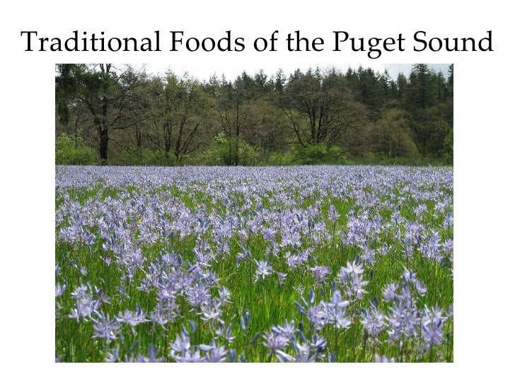 Traditional Foods of the Puget Sound