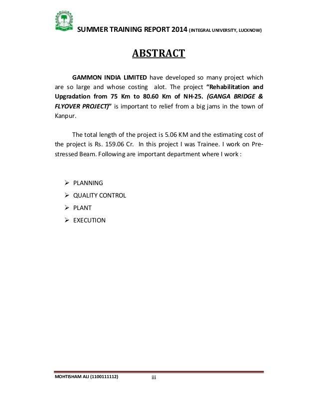 summer internship sample essay