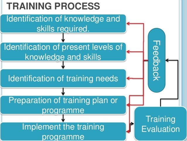 implementing a training and development program
