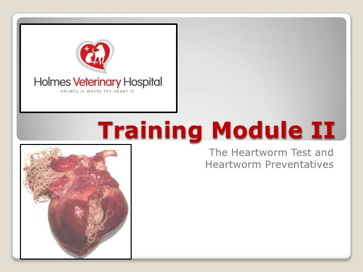 Training Module II<br />The Heartworm Test and<br />Heartworm Preventatives<br />