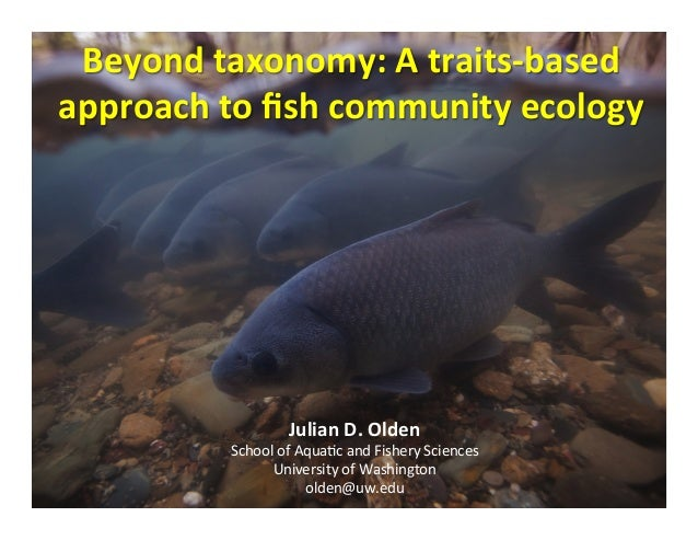 Beyond taxonomy: A traits-based approach to fish community ecology