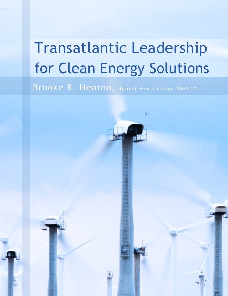 Transatlantic Leadership for Clean Energy Solutions