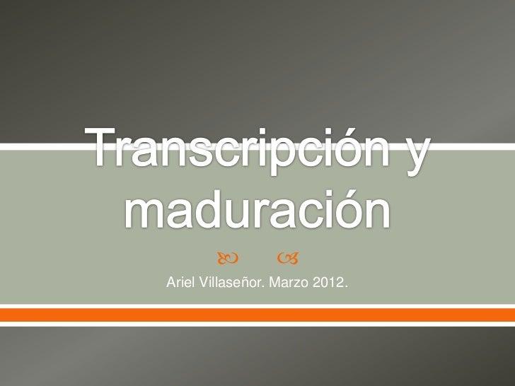 Transcripción y maduración del ARN