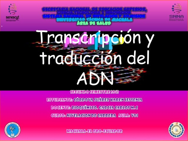 S  Transcripción y traducción del ADN