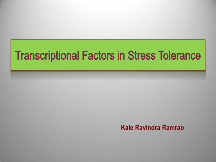 Transcriptional factors in stress tolerance