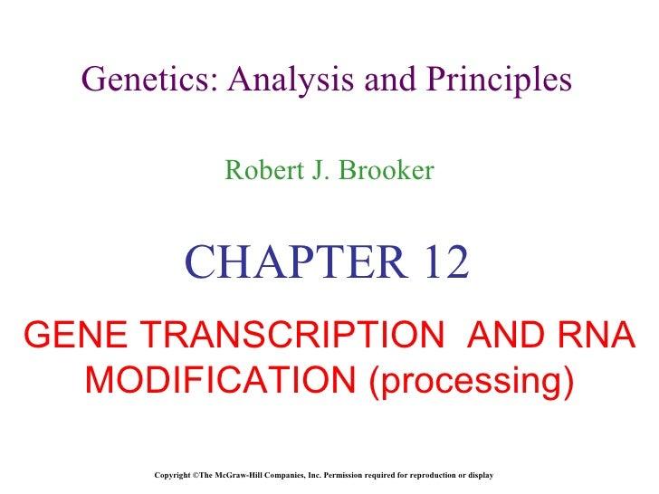 Transcription and splicing.