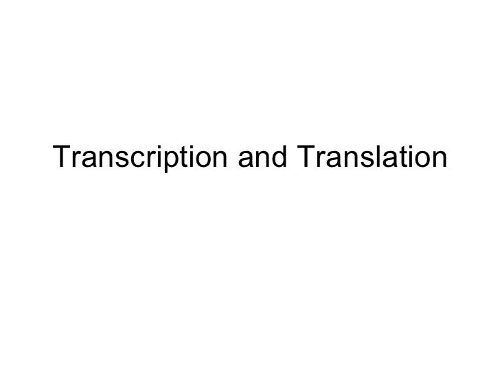 Transcription and Translation PowerPoint