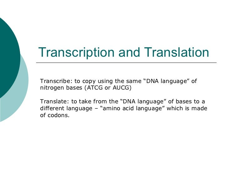 "Transcription and Translation Transcribe: to copy using the same ""DNA language"" of nitrogen bases (ATCG or AUCG) Translate..."