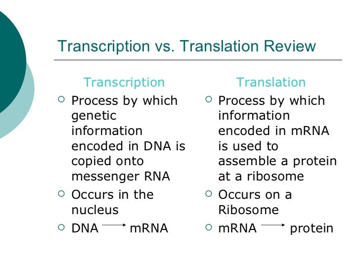 summary of the transcription process Transcription summary the first step is the conversion of the information into messenger rna (mrna)  the traditional view of elongation as a monotonic process .