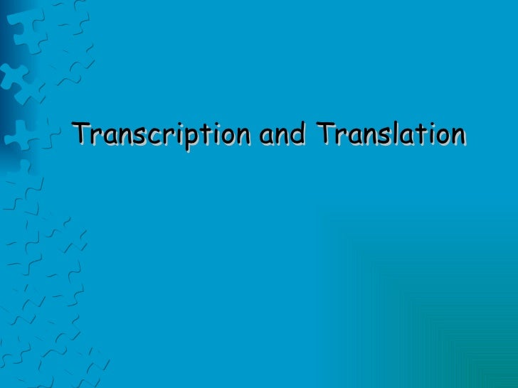 Transcription and translation08
