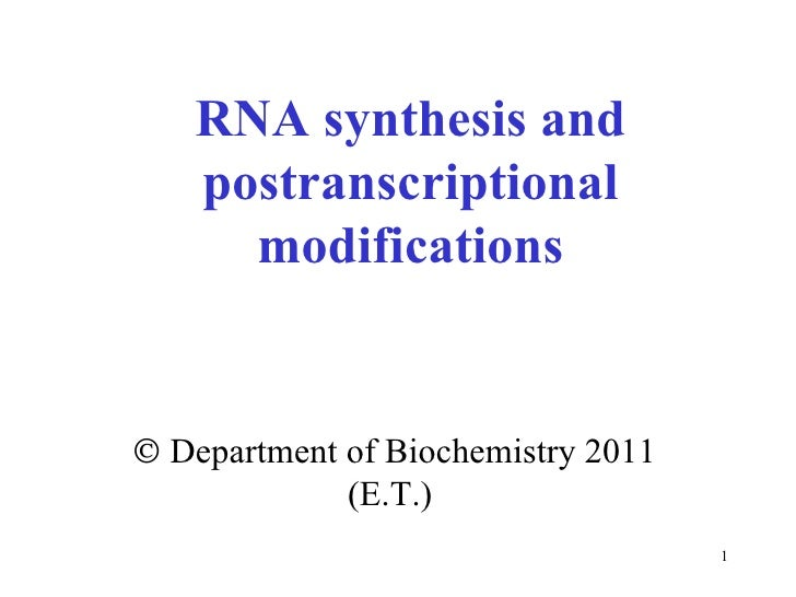 RNA synthesis and postranscriptional modifications    Department of Biochemistry 2011 (E.T.)