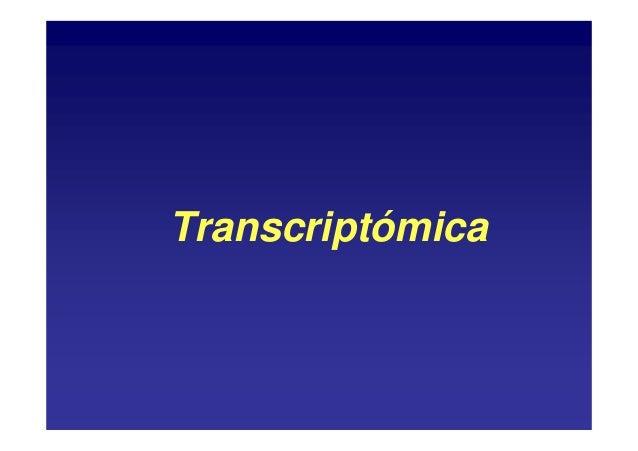 Transcriptómica
