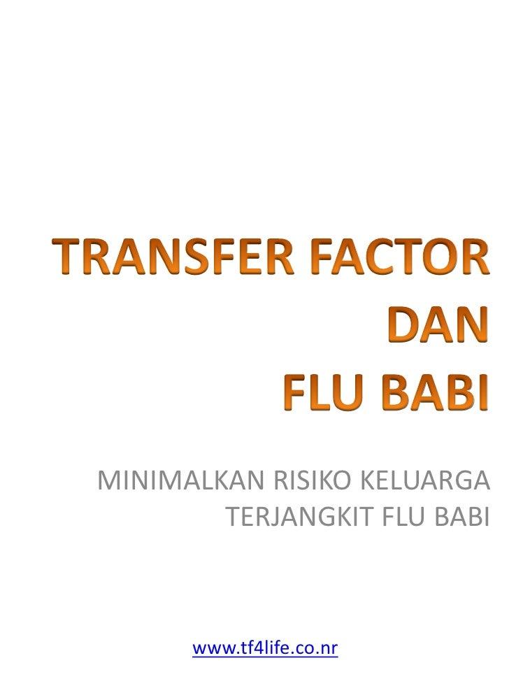 MINIMALKAN RISIKO KELUARGA         TERJANGKIT FLU BABI          www.tf4life.co.nr