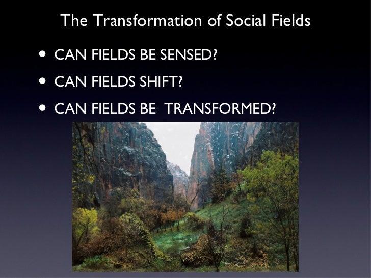 Transforming Social Fields