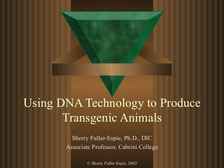 Using DNA Technology to Produce Transgenic Animals Sherry Fuller-Espie, Ph.D., DIC Associate Professor, Cabrini College © ...