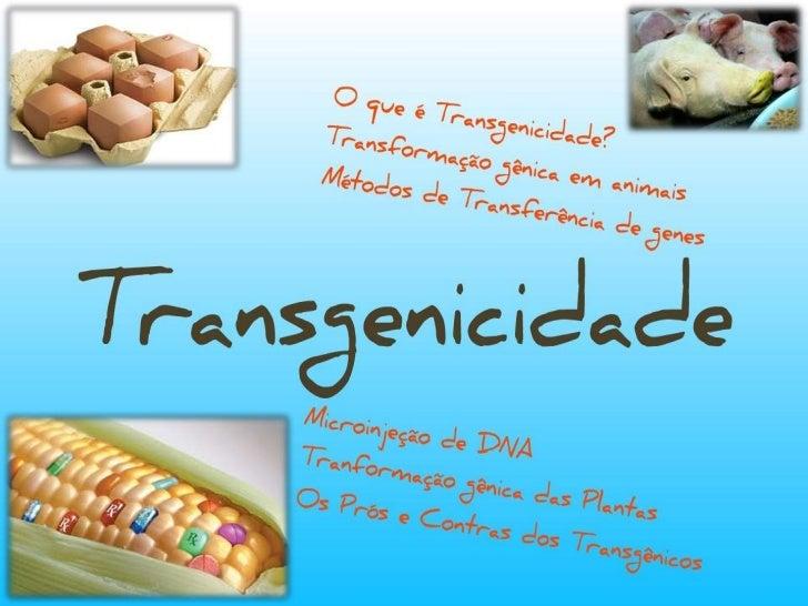 Transgenicidade