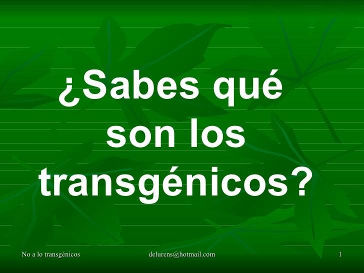 ¿Sabes qué  son los transgénicos?