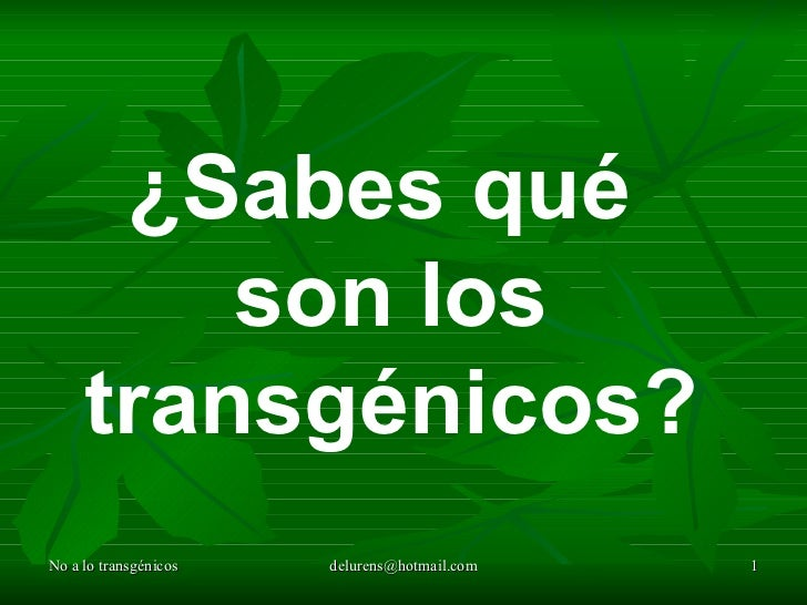 ¿Sabes qué         son los     transgénicos?No a lo transgénicos   delurens@hotmail.com   1