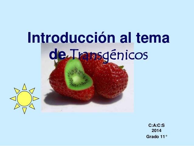 Introducción al tema de Transgénicos C:A:C:S 2014 Grado 11°