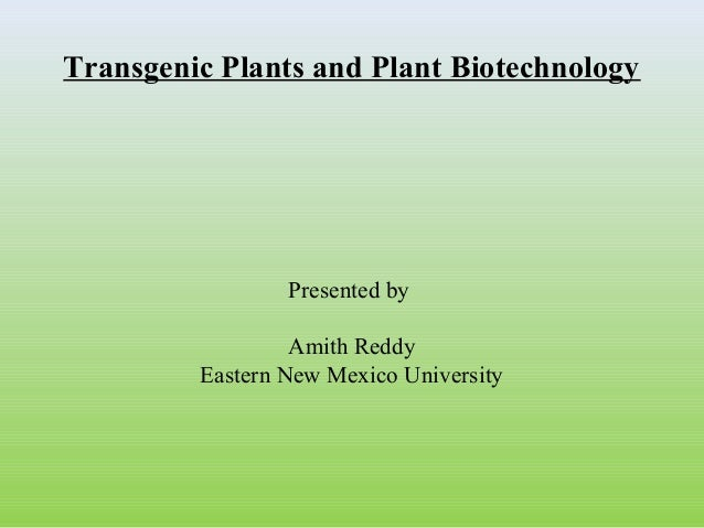 Transgenic Plants and Plant Biotechnology  Presented by Amith Reddy Eastern New Mexico University