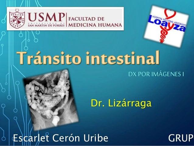 DX PORIMÁGENES I Dr. Lizárraga Escarlet Cerón Uribe GRUPO