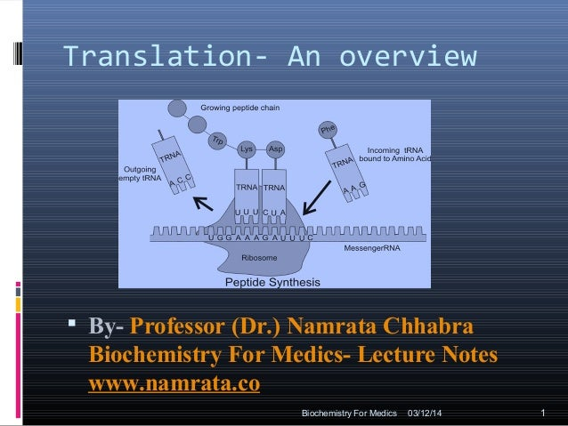 Translation- An overview  By- Professor (Dr.) Namrata Chhabra Biochemistry For Medics- Lecture Notes www.namrata.co 03/12...