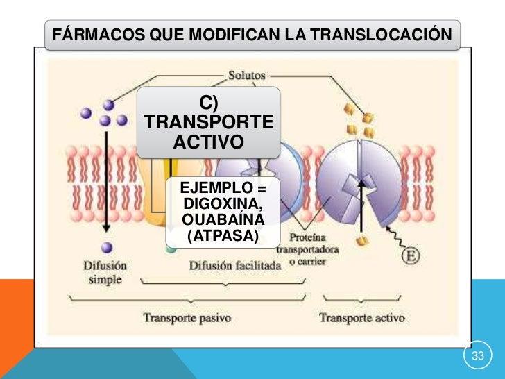 receptores de hormonas esteroides