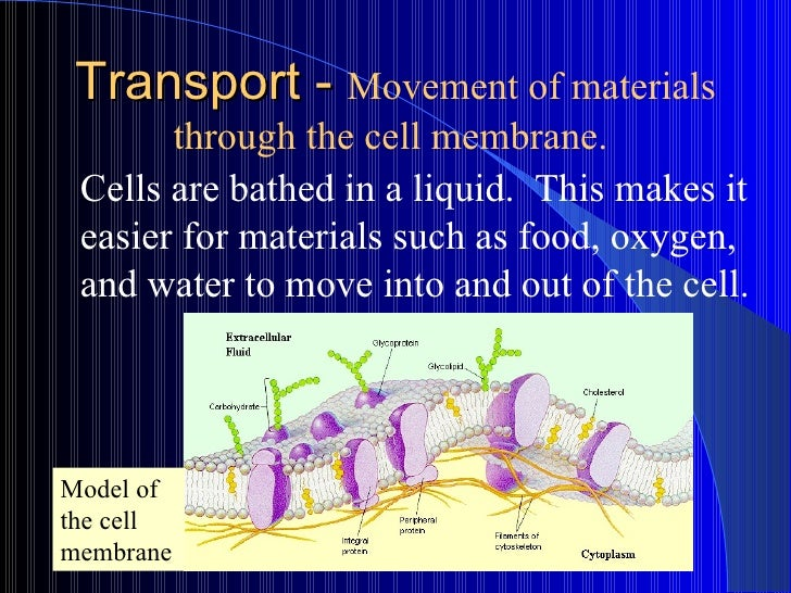 Transport -  Movement of materials through the cell membrane.   Cells are bathed in a liquid.  This makes it easier for ma...