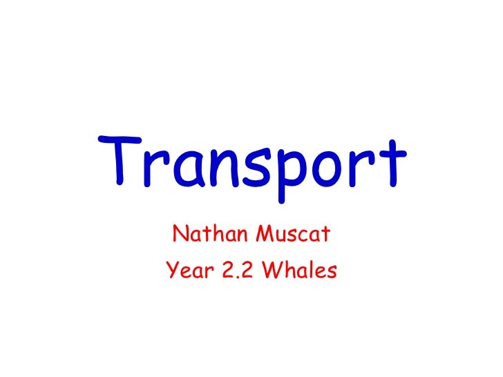 Transport Nathan Muscat Year 2.2 Whales