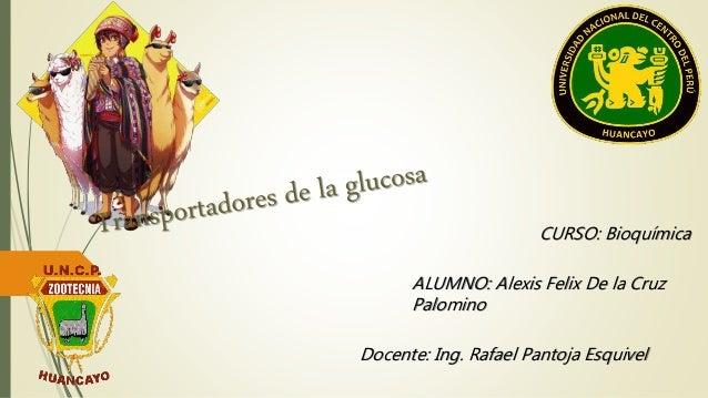 CURSO: Bioquímica  ALUMNO: Alexis Felix De la Cruz  Palomino  Docente: Ing. Rafael Pantoja Esquivel