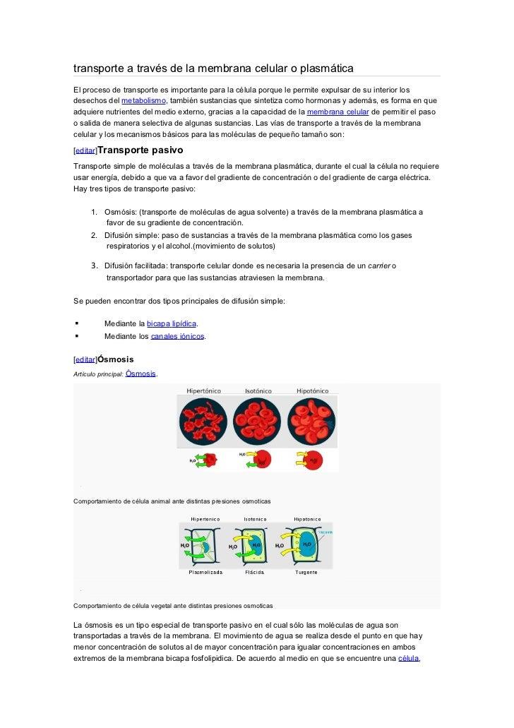 transporte a través de la membrana celular o plasmáticaEl proceso de transporte es importante para la célula porque le per...