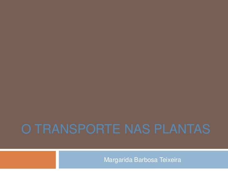 O TRANSPORTE NAS PLANTAS          Margarida Barbosa Teixeira