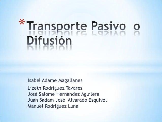 *    Isabel Adame Magallanes    Lizeth Rodríguez Tavares    José Salome Hernández Aguilera    Juan Sadam José Alvarado Esq...
