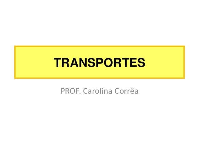 TRANSPORTES PROF. Carolina Corrêa