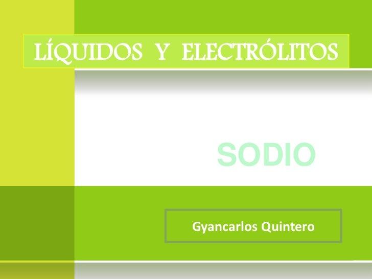 LÍQUIDOS Y ELECTRÓLITOS              SODIO           Gyancarlos Quintero