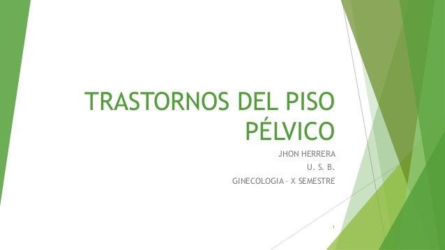 TRASTORNOS DEL PISOPÉLVICOJHON HERRERAU. S. B.GINECOLOGIA – X SEMESTRE1