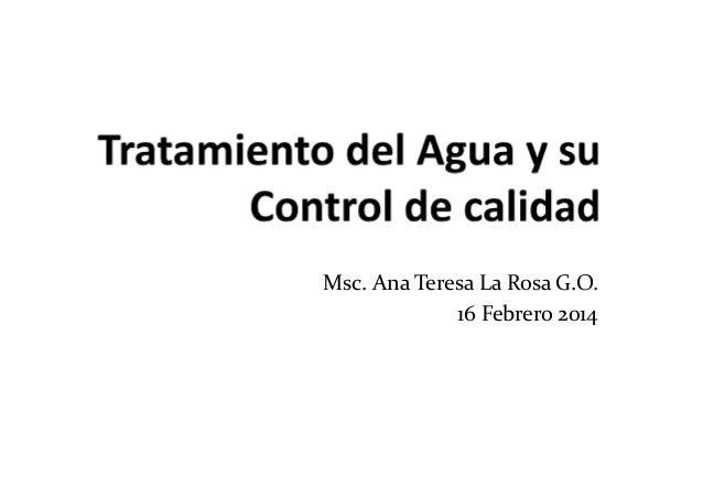 Msc. Ana Teresa La Rosa G.O. 16 Febrero 2014