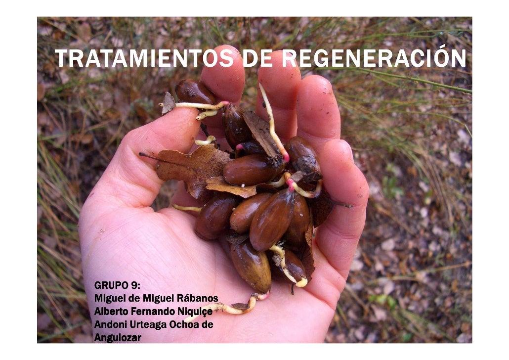 TRATAMIENTOS DE REGENERACIÓN  GRUPO 9:  Miguel de Miguel Rábanos  Alberto Fernando Niquiçe  Andoni Urteaga Ochoa de  Angui...