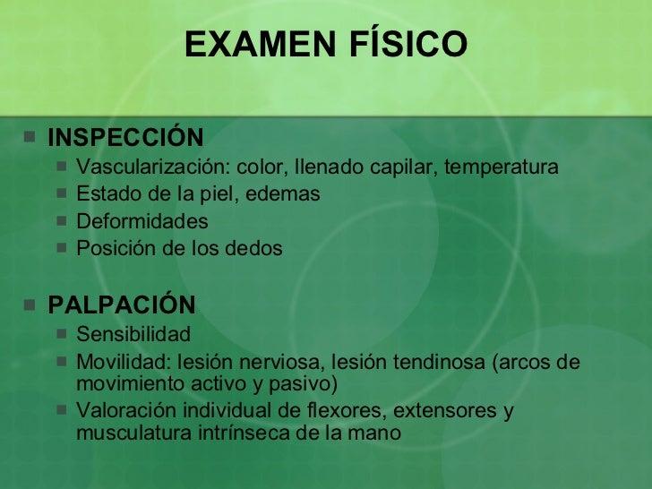 Secretos de Anatomía Humana: DEPORTE DE LA PELOTA A MANO Y SUS ...