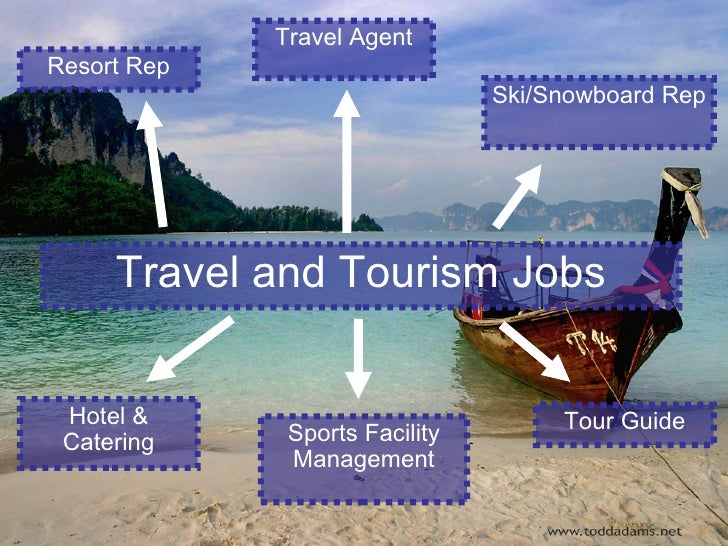career opportunities in tourism industry thesis The professions in the hospitality industry have a lower average pay than other industries, due to the preponderance of hourly workers and customer service jobs however, the general outlook for the hospitality, leisure, tourism, and dining industries is quite strong.