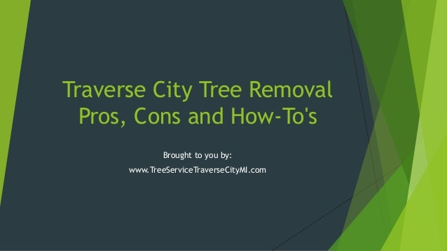 Traverse City Tree Removal Pros, Cons and How-To's